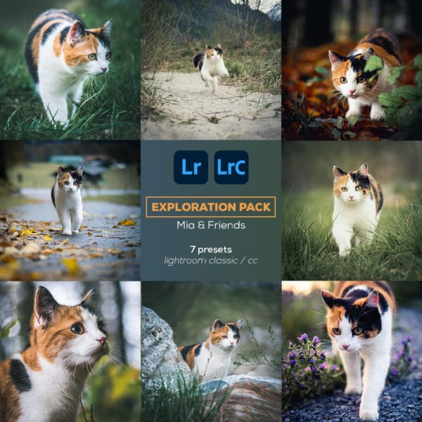 Exploration Pack - Lightroom Presets - Plpictures by Paedii Luchs