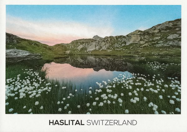 An alpine lake surrounded by cottongrass near Grimselpass in the Haslital area